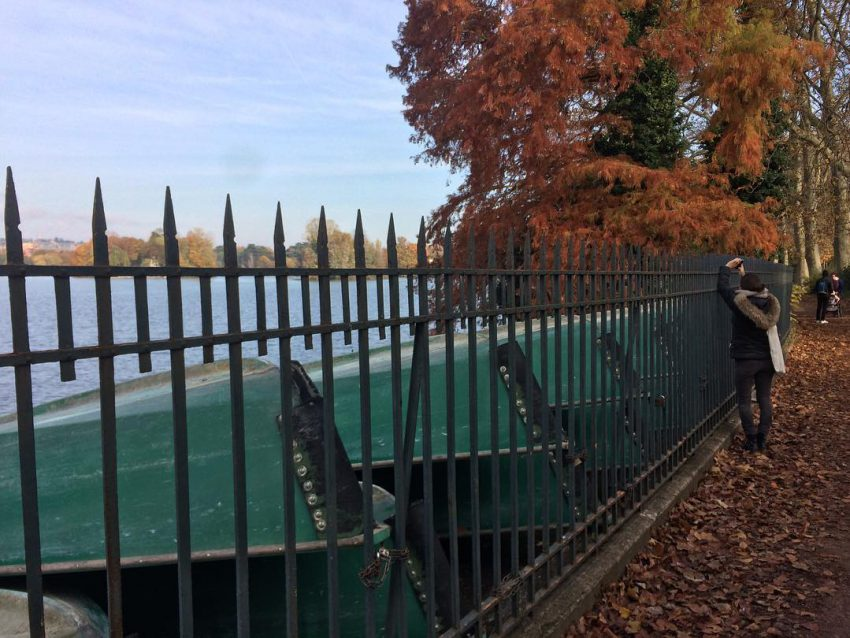 #autumn #park