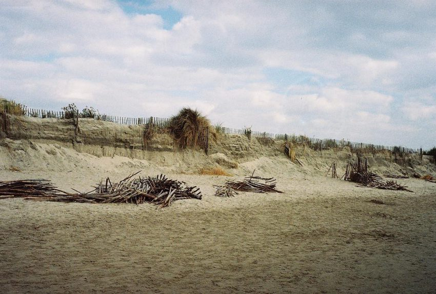 #filmisnotdead #filmphotographic #35mm #analog #beach