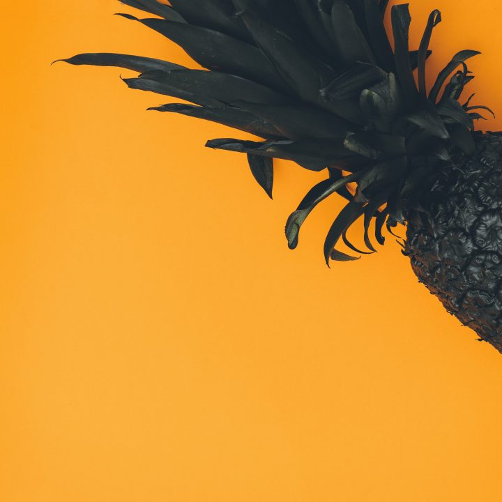 pineapple-supply-co-378132